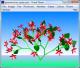 Virtual Flower 2.1 full screenshot