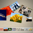 Microsoft Touch Pack for Windows 7 1.0.40517.00 full screenshot