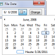 File Date 1.1 full screenshot