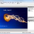 Fotografix Portable 1.5 full screenshot