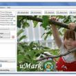 uMark Professional 6.0 full screenshot