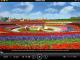 Total Video Player for Mac 2.7.10 full screenshot