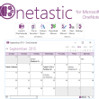 Onetastic for Microsoft OneNote 32bit 3.5.0 full screenshot