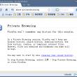 Chromin Frame 1.0.9.7 full screenshot