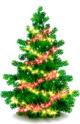 Green Christmas Tree 1.1 full screenshot