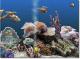 Marine Aquarium 3 3.0 full screenshot