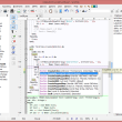 SynWrite 6.40.2770 full screenshot