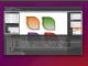 CSSDesigner for Linux 4.5 full screenshot
