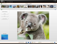 Nero Vision Xtra 10.6.10800 full screenshot
