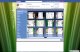 Facefetti for Internet Explorer 1.0 full screenshot