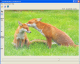 ChangePictureOpacity 0.2 full screenshot