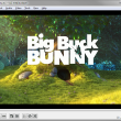 VLC Media Player Portable 3.0.4 full screenshot