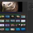 CatDV Pro for Mac OS X 13.0.10 full screenshot