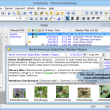 Personal Knowbase 4.1.1 full screenshot