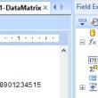 DataMatrix Generator for Crystal Reports 19.06 full screenshot