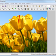 PhotoFiltre Portable 7.2.1 Rev 3 full screenshot