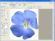 MosaicArtSoftware 1.0 full screenshot