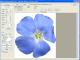 MosaicArtSoftware 1.0 full screenshot