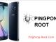 PingPong Root 1 full screenshot