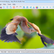 Easy Photo Studio FREE for Windows 4.0.1 full screenshot