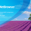 DotNetBrowser 1.14 full screenshot