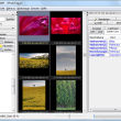 JPhotoTagger 0.34.9 full screenshot