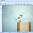 Free File Opener 2011.7.0.1 full screenshot
