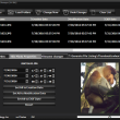 Batch JPEG Date Changer 1.10 full screenshot