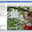 uMark Professional 6.0 full screenshot