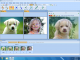 Morpheus Photo Morpher 3.17 full screenshot