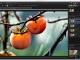 PaintSupreme 1.5 full screenshot