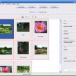 Bloom 3.5.3 full screenshot