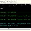 Flash Video Server 1.0 full screenshot