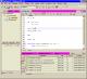 Codenizer 2009 full screenshot