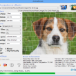 AndreaMosaic for Mac 3.33.00 full screenshot