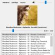 Vorbital Player 4.43 full screenshot