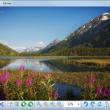 Salview 1.1 full screenshot