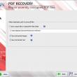 PDF Recovery Tool 18.0 full screenshot