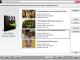 Free Video Converter 9.9.3 full screenshot